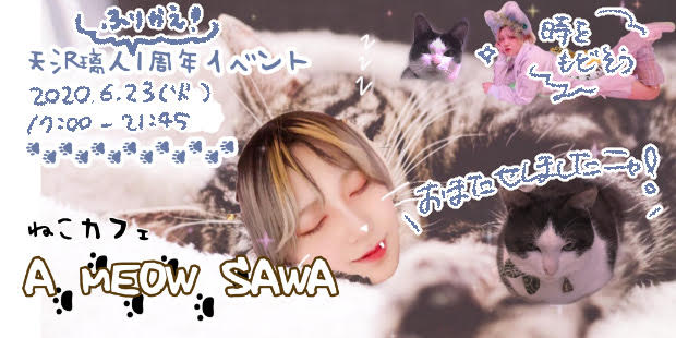 ねこカフェ A MEOW SAWA